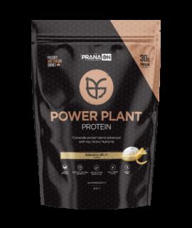 1.1.1.4 Power plant protein – Banana split
